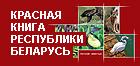 Красная книга Республики Беларусь