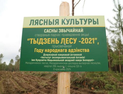 Республиканская добровольная акция «Неделя леса»