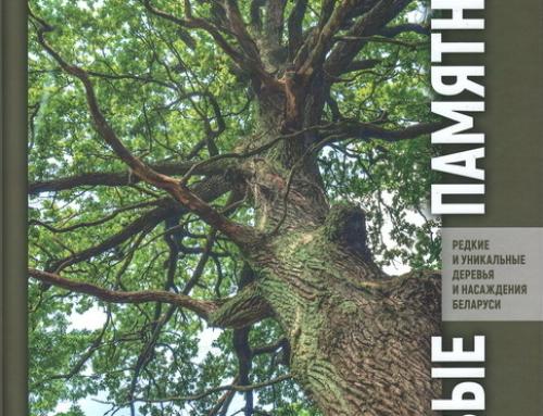 Издана научно-популярная книга «Живые памятники: редкие и уникальные деревья и насаждения Беларуси»