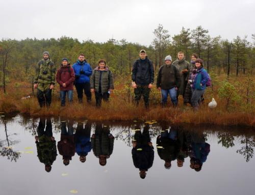 Проведен IV Международный научный семинар «Растительность болот: современные проблемы классификации, картографирования, использования и охраны»